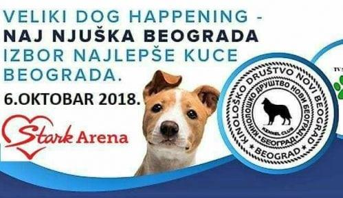 Druženje dece i pasa ispred Štark Arene 6. oktobra 9