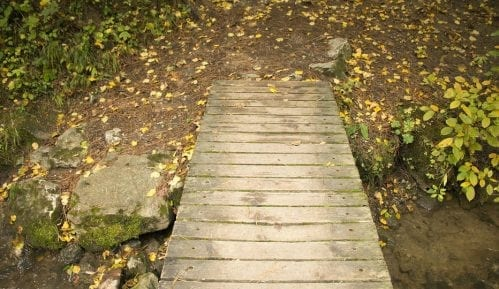 Utiče li jesen na naše zdravlje? 9