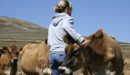 Žene samo u 17 odsto slučajeva vlasnice poljoprivrednih gazdinstava 6