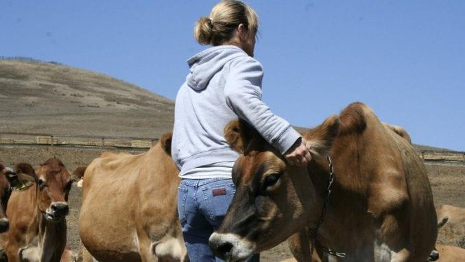 Žene samo u 17 odsto slučajeva vlasnice poljoprivrednih gazdinstava 1