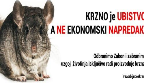 Marš za zabranu uzgoja životinja radi proizvodnje krzna 24. novembra 1