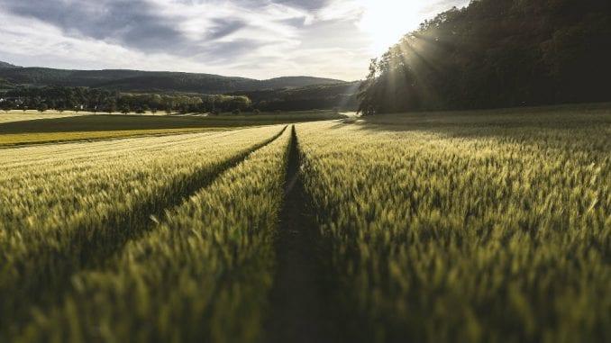 Ovogodišnji poljoprivredni rod bar prosečan 2