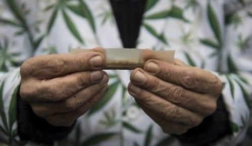 Činjenice o marihuani: Koje vrste postoje, pomaže li kod anksioznosti... 7