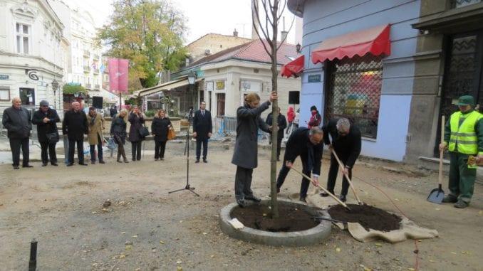 Zasađeno deset stabala u Skadarskoj i Ulici Emilijana Josimovića 1
