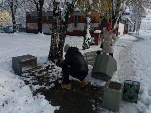 """U Batajnici pokrenuta """"Akcija za napuštene pse"""" (FOTO) 2"""