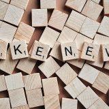 Bukumirović: Mašinerija lažnih vesti 3