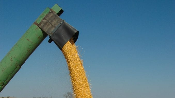 Crna Gora: Veliko interesovanje poljoprivrednika za agrobudžet 1