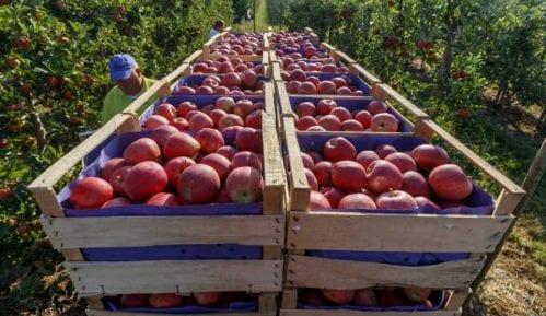 Poljoprivrednici zakinuti za oko 11,41 milijardu dinara 4