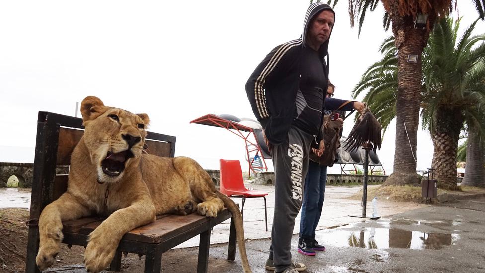 Čovek i lav