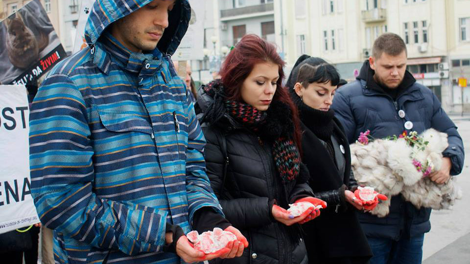 U Srbiji stupa na snagu zabrana uzgoja životinja radi krzna 1