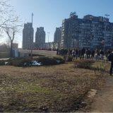 Zelena stranka: Beogradu treba milion stabala novog drveća 12