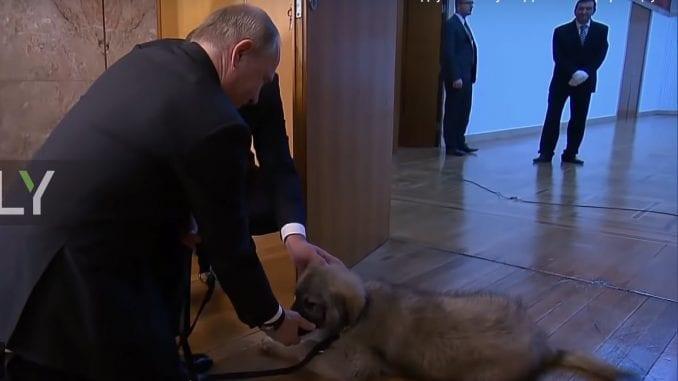 Putinov Paša iz šampionskog legla (VIDEO) 1