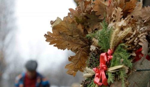 Nacionalni park Fruška gora deli 10.000 besplatnih badnjaka 15