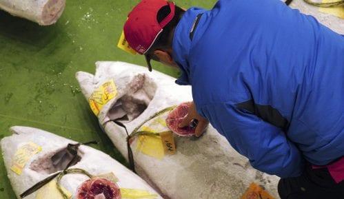 U Tokiju tuna prodata za rekordnih 2,7 miliona evra 9