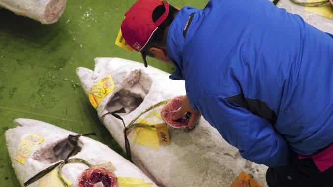 U Tokiju tuna prodata za rekordnih 2,7 miliona evra 1