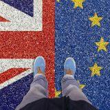 EU osudila produžetak grejs perioda za kontrolu hrane između Velike Britanije i Severne Irske 6