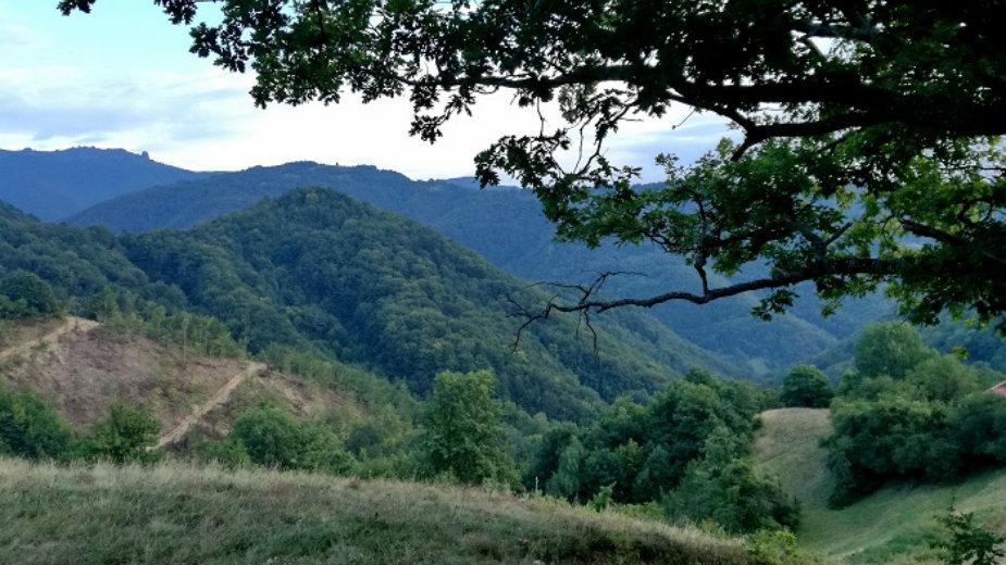 Stara planina, još uvek raj u prirodi 10
