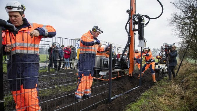 Danci grade ogradu dugu 70 km za zaštitu od svinjske groznice 4