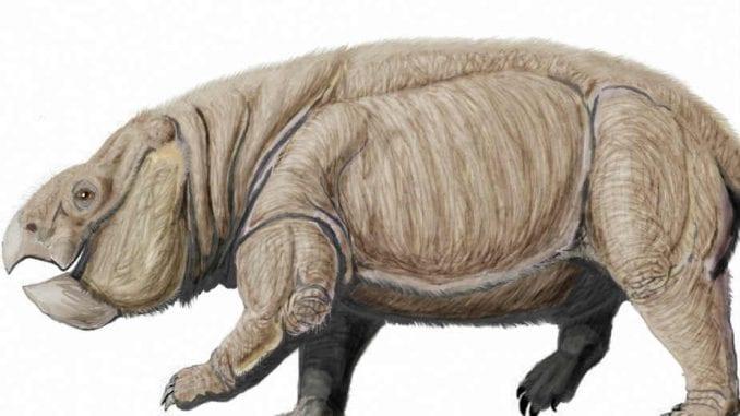 Otkriven džinovski rođak sisara (2. deo) 1