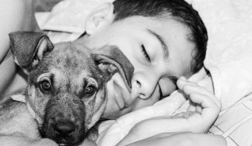 Šta se dešava ako spavate sa svojim psom? 15