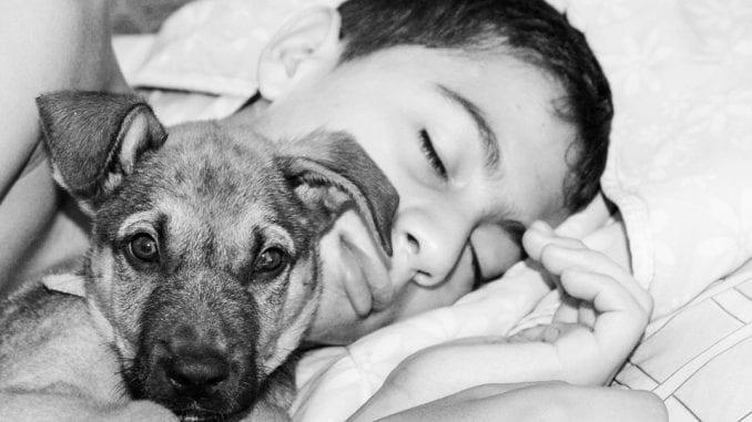 Šta se dešava ako spavate sa svojim psom? 2