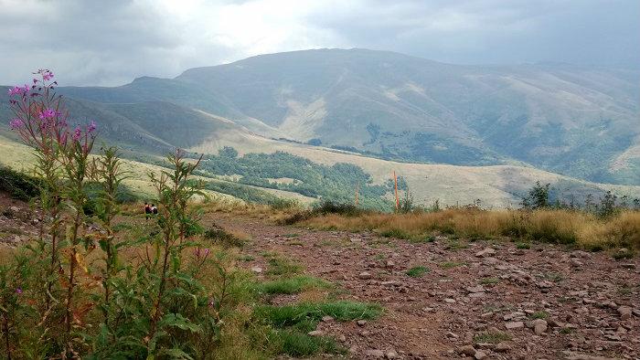 Stara planina, još uvek raj u prirodi 2