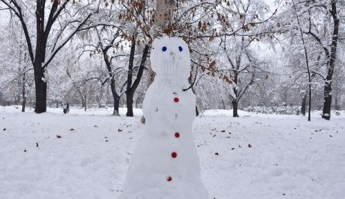 Prvi sneg na plaininama u Bosni 8