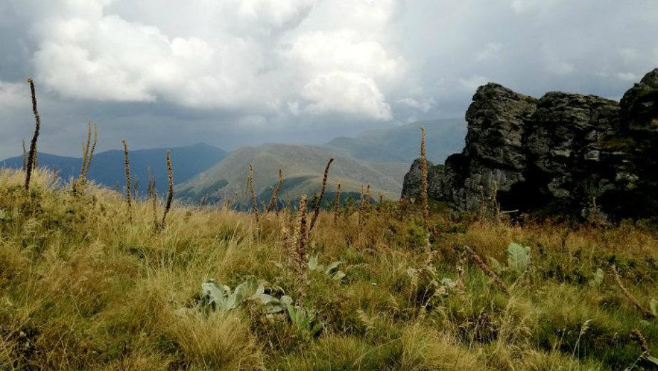 Stara planina, još uvek raj u prirodi 6