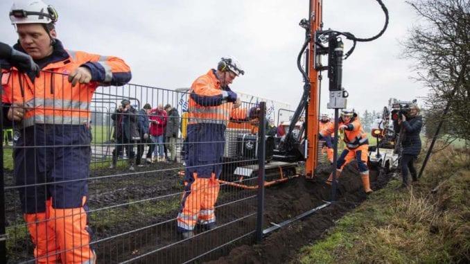 Danska počela gradnju ograde na granici s Nemačkom zbog svinjske groznice 3