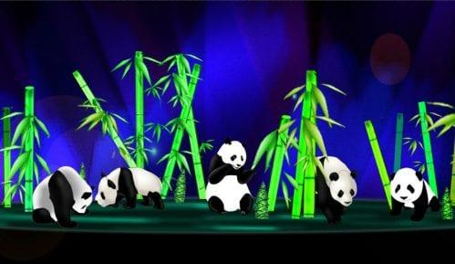 Kineski festival svetla na Kalemegdanu 10
