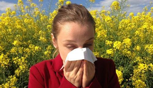 Kako se ponašati u nadolazećoj sezoni alergija? 6