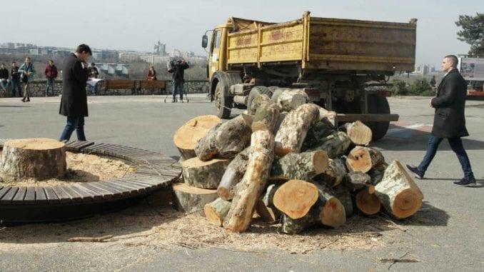 Građanske patrole za odbranu drveća na Kalemegdanu 1