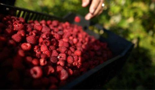 Proizvođači malina i kupina sa Komisijom o problemu niskih cena tog voća 2