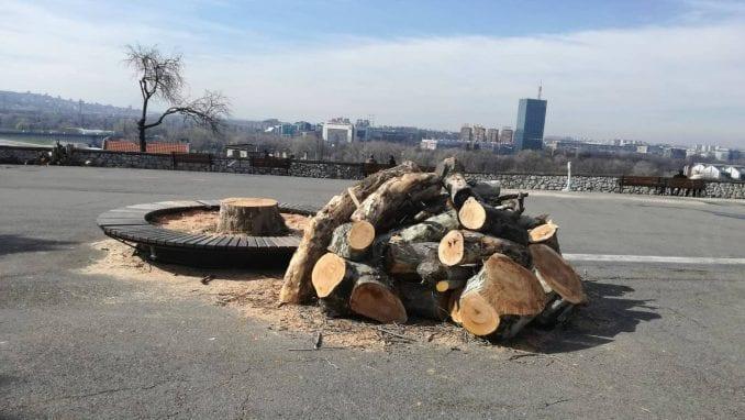 Zelenilo sutra sadi 300 stabala na Kalemegdanu i Ušću 1