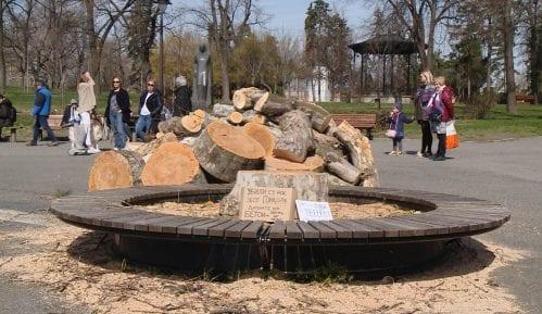 Opština Stari grad ukinula rešenje o stablima, postupak protiv zaposlenog 13