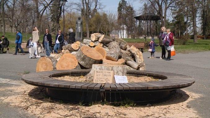 Opština Stari grad ukinula rešenje o stablima, postupak protiv zaposlenog 1