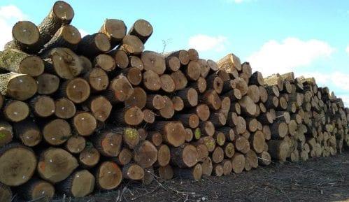 Seča šume Gibavac bila po zakonu 10