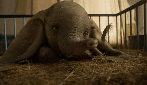 Slonče Dambo ponovo na velikim ekranima (VIDEO) 2