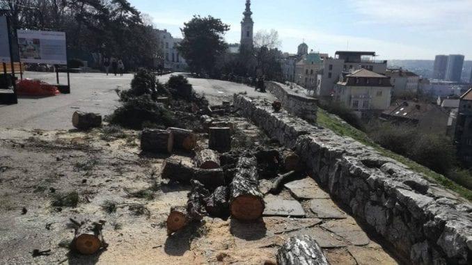 """""""Skijališta Srbije"""": Stabla na Ušću i Kalemegdanu posečena na predlog Stručne komisije 1"""
