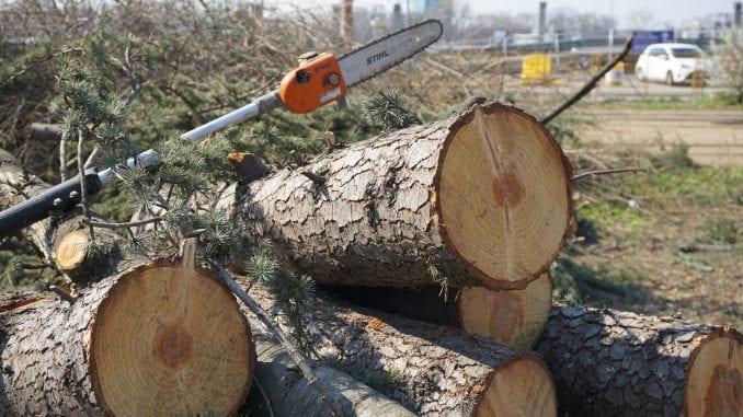CINS: Srbija izgubila 2,5 milijarde dinara zbog ilegalne seče šuma uz administrativnu liniju 4