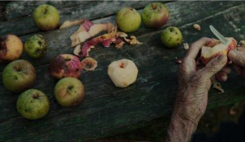 Dokumentarac Maje Novaković u Švajcarskoj 3
