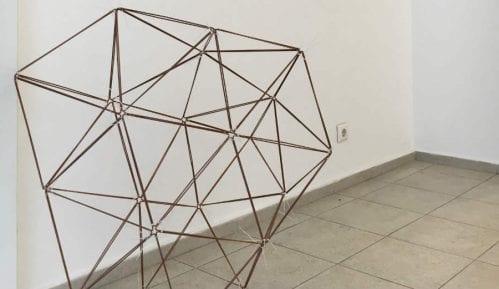 "Izložba ""Ne/promenljivo"" do 12. aprila u Galeriji Haos 12"