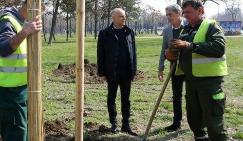 Radojičić u akciji sadnje 163 stabla u parku Ušće u Beogradu 3