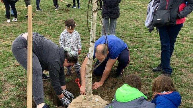 Nova akcija sađenja drveća u parku Ušće 30. marta 3