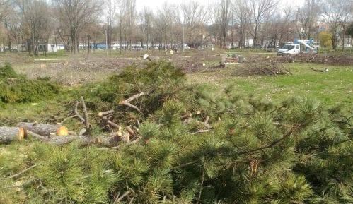 Šta kažu građani o radovima na Beogradskoj tvrđavi? (ANKETA) 10