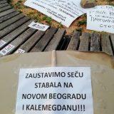 Protest Jedan od pet miliona zbog seče drveća na Kalemegdanu (FOTO) 7