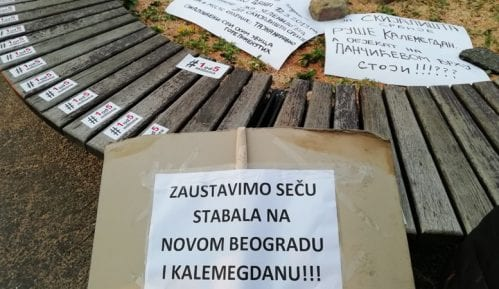 Protest Jedan od pet miliona zbog seče drveća na Kalemegdanu (FOTO) 5