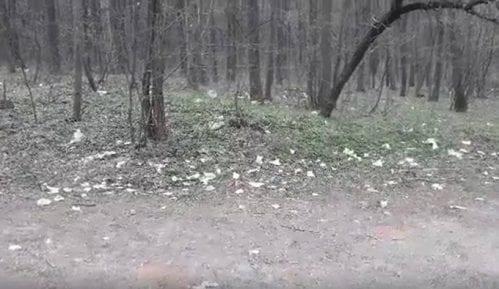 Zaječar: Pluća grada zatrpana smećem, deponije niču širom Kraljevice 14