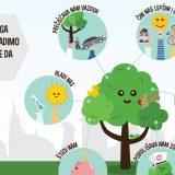 Šest načina kako drveće unapređuje kvalitet života 6