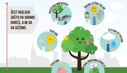 Šest načina kako drveće unapređuje kvalitet života 13